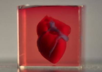 انسانی جسم کی بافتوں سے تھری ڈی پرنٹر کے ذریعے بنائے گئے پہلے دل کی تیاری