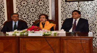 بھارت عالمی سطح پر پاکستان کو تنہا کرنے کی کوششوں میں ناکام ہو گیا ہے، تہمینہ جنجوعہ