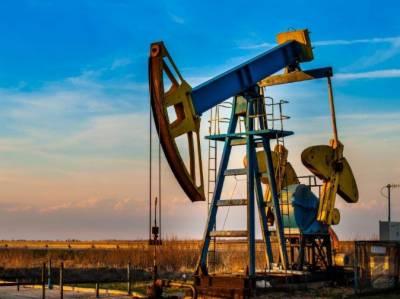 तेल का नया ज़ख़ीरा ज़िला रावलपिंडी के ग़ौरी बलॉक से दरयाफ़त