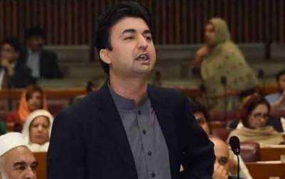 حادثاتی طور پر پارٹی چیئرمین بننے والا بلاول بھارت کا مقدمہ لڑ رہا ہے: مراد سعید