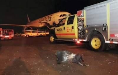 سعودی محکمہ دفاع نے حوثیوں کے پانچ ڈرون طیارے مار گرائے