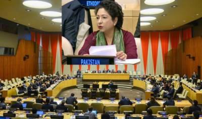 پاکستانی وزیراعظم نےبھی اسلام دشمن تعصب کیخلاف عالمی کوششوں پر زور دیا ہے:ملیحہ لودھی