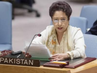 وزیر اعظم عمران خان نے مختلف فورمز پر اسلام فوبیا کے خاتمہ کے لئے فور ی اقدامات کی ضرورت پر زور دیا ہے: ڈاکٹر ملیحہ لودھی