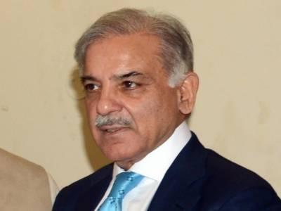 میرے خلاف برطانوی اخبار میں خبر چھپواکر پاکستان کو بدنام کیا گیا، شہباز شریف