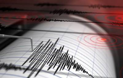 نیوزی لینڈ میں زلزلے کے شدید جھٹکے
