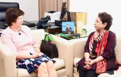 کشمیر پر بھارت کا قبضہ ختم کرانا سلامتی کونسل کی ذمے داری ہے:ملیحہ لودھی