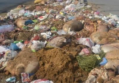 کراچی میں حالیہ بارشیں:قربانی کے جانوروں کی آلائشیں صاف نہ ہونے سے شہری اذیت سے دوچار