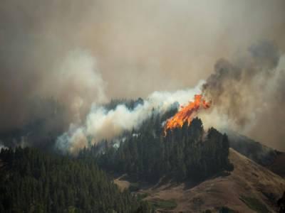 اسپین کے جزائر کناری پر لگی جنگلاتی آگ قابو سے باہر،نوہزار افرادکی منتقلی