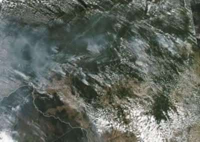 برازیل :ایمیزون کے جنگل میں لگی آگ نے شدت اختیار کر لی