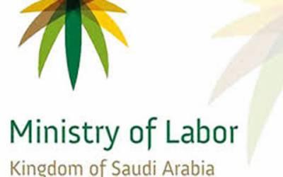 سعودی وزارت محنت و سماجی بہبود نے نجی اداروں کو غیرملکی ملازمین کے لئے فوری ویزے کی سہولت دے دی