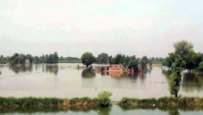 اوکاڑہ کے قریب دریائے ستلج میں نچلے درجے کا سیلاب,71بستیاں زیرے آب
