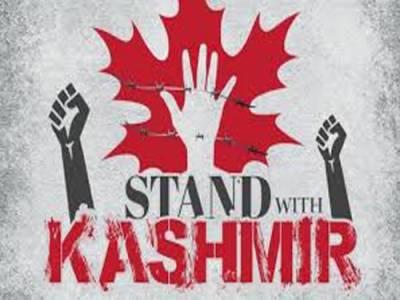 مقبوضہ کشمیر کے مظلوم عوام کے ساتھ اظہار یکجہتی, دنیا کے مختلف ملکوں میں کشمیر آور منایا گیا