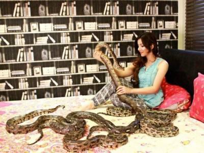 رابی پیرزادہ کو اژدھوں اور مگرمچھ کیساتھ تصاویر شیئر کرنا مہنگا پڑگیا،عدالت نے 27 ستمبر کو طلب کرلیا