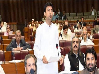 کراچی کے مسائل کے حل کی بات کریں تو کہتے ہیں وفاق نہیں بچے گا، وفاق بچے گا، ان کی سیاست نہیں بچے گی: مراد سعید