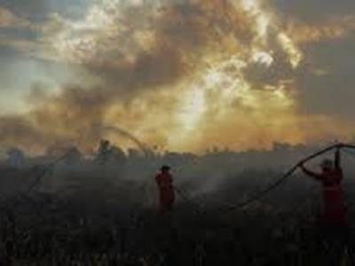 انڈونیشیا کے جنگلات کی آگ کا دھواں ملائیشیا اور سنگاپور تک پہنچ گیا، جکارتہ میں سینکڑوں پروازیں منسوخ