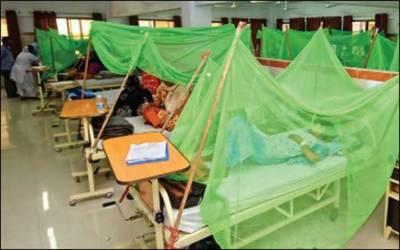 ملتان : ڈینگی بےقابو، مریضوں کی تعدادمیں اضافہ
