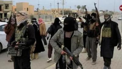 مصری پولیس سے دو جھڑپوں میں نومشتبہ جنگجو ہلاک