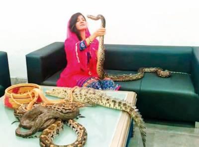 اژدھے اور مگر مچھ رکھنے کا کیس،رابی پیرزادہ کے وارنٹ گرفتاری جاری