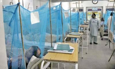 اسلام آباد: ڈینگی وائرس سے جاں بحق افراد کی تعداد 10ہوگئی ، پمز میں داخل7مریضوں کی حالت تشویشناک