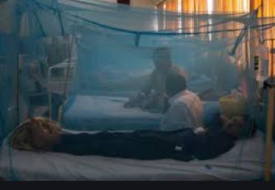 ڈینگی کے بے قابو،خیبرپختونخوا اور پنجاب بھر میں مریضوں کی تعداد میں اضافہ