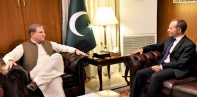 برطانوی شاہی جوڑے کی پاکستان آمد کے منتظر ہیں:شاہ محمود قریشی