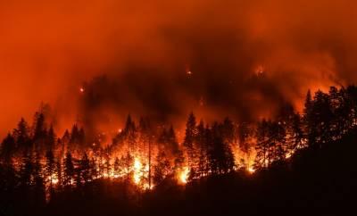 کیلیفورنیا کے جنگلات میں لگی آگ4 ہزار ایکڑ سے زائد رقبے تک پھیل گئی