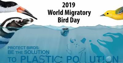 نقل مکانی کرنے والے پرندوں کاآج عالمی دن منایاجارہاہے
