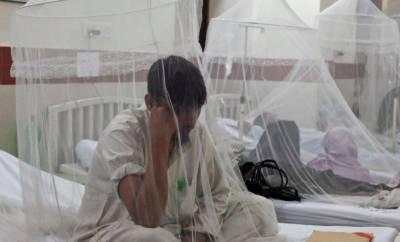 ملک بھر میں ڈینگی کے مریضوں کی تعداد 50 ہزار سے تجاوز،250 جاں بحق