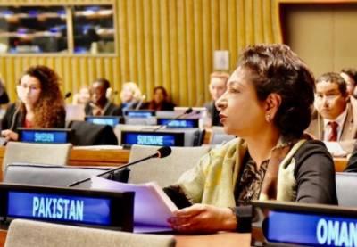 تنازعہ کشمیر کے حل کے بغیر نوآبادیاتی نظام کے خاتمے سے متعلق اقوام متحدہ کا ایجنڈا نامکمل رہے گا:ملیحہ لودھی