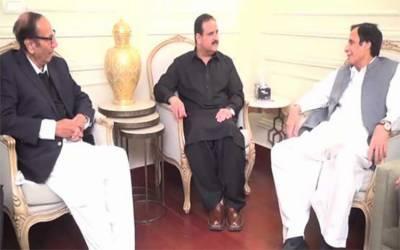 وزیر اعلی پنجاب کی چودھری برادران سے ملاقات، ملکی سیاسی معاملات پر تبادلہ خیال
