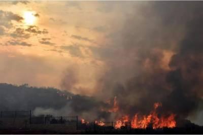 لبنان: جنگلات میں لگی آگ بے قابو، ہمسایہ ممالک سے امداد طلب