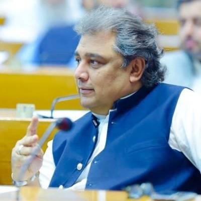 جعلی مولویوں نے لاکھوں سادہ لوح افرادکوگمراہ کر رکھاہے، علی زیدی