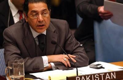 پاکستان کشمیریوں کے حق خودارادیت کی اصولی حمایت جاری رکھے گا:منیر اکرم