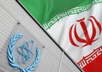 ایران میں آئی اے ای اے کی خاتون انسپکٹر کی گرفتاری ، سفری دستاویزات ضبط