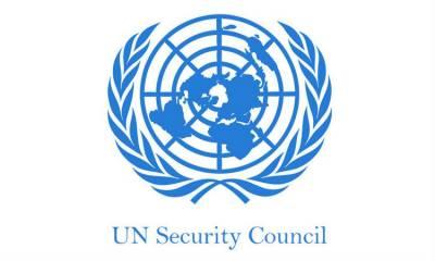 الریاض معاہدہ یمن تنازع کے جامع حل کی جانب اہم قدم ہے، سلامتی کونسل