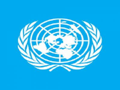 اقوام متحدہ کی سلامتی کونسل نے یمنی حکومت اور جنوبی عبوری کونسل کے مابین معاہدے کو خوش آئند قرار دے دیا