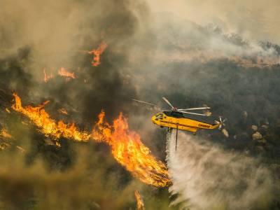 آسٹریلیا میں جنگلاتی آگ شدید ہو گئی، دوافراد ہلاک، درجنوں زخمی