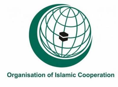 اسلامی تعاون تنظیم کی غزہ میں اسرائیلی جارحیت کی سخت مذمت