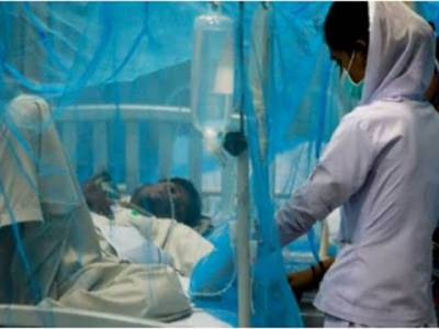 فیصل آباد میں ڈینگی سے متاثرہ مریضوں کی تعداد 186 ہوگئی