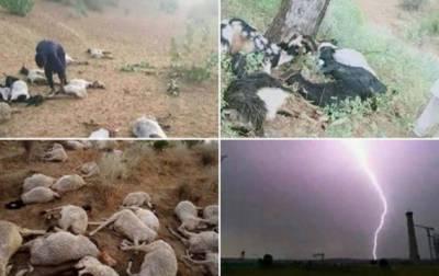 تھر میں آسمانی بجلی نے تباہی مچا دی۔ 25 افراد کی جان لے لی۔