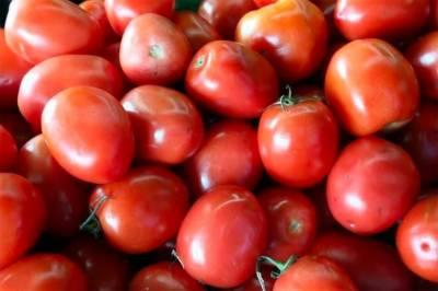 ملک بھر میں ٹماٹروں کے بحران پر قابو پانے کیلئے ایران سے ٹماٹر منگوالیے گئے