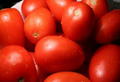 کراچی:ٹماٹر کی قیمت 400 روپے فی کلو کی ریکارڈ سطح پر پہنچ گئی