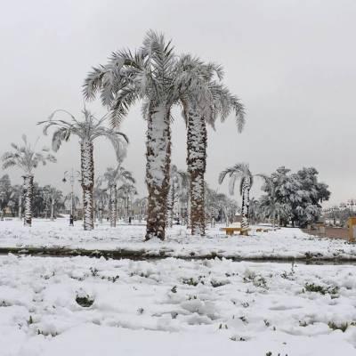 سعودی عرب میں سردی کہ لہر، شفا میں پارہ منفی 3 تک گر گیا