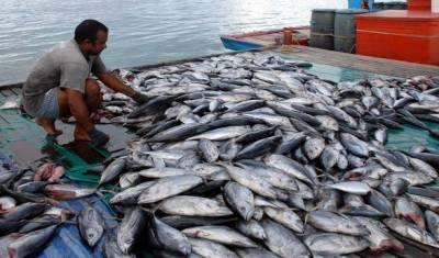 کراچی:فشنگ صنعت سے وابستہ افراد کیلئے لائسنس ضروری قرار
