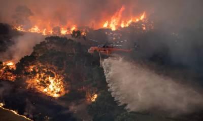 آسٹریلیا:جنگلات میں لگی آگ پر قابو نہ پایا جاسکا،ہلاکتوں کی تعداد 26ہوگئی