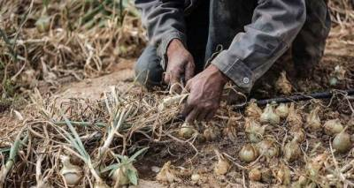 اسرائیل کی آبی دہشت گردی، ڈیم کھولنے سے غزہ کے کئی علاقے زیرآب، فصلیں تباہ