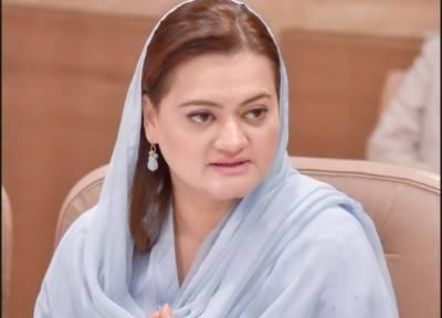 فیصل واوڈا جیسے لوگوں کا پارلیمان اور کابینہ میں ہونا پاکستان کی بدقسمتی ہے:مریم اورنگزیب