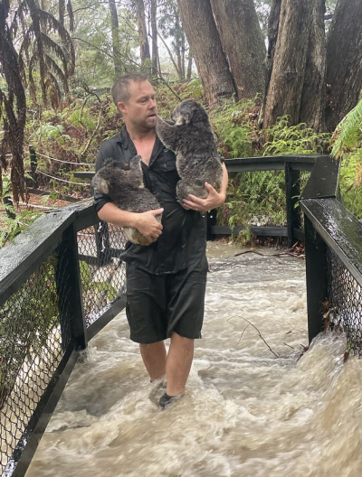آسٹریلیا: بارش کے بعد سیلابی پانی چڑیا گھر میں داخل، جانور محفوظ مقام پر منتقل