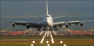 اسلام آباد ائیر پورٹ پر طیارے کے پہیے کے نیچے آکر جنگلی جانور ہلاک