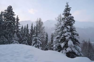 آئندہ 24 گھنٹوں کے دوران ملک کے چند مقامات پر بارش اور پہاڑوں پر برف باری کا امکان ہے، محکمہ موسمیات